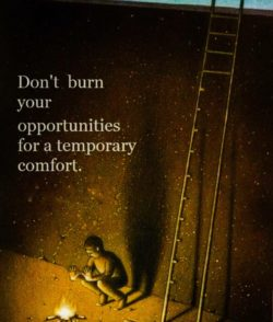 Dont Burn Your Opportunities